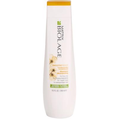 Matrix Biolage SmoothProof uhladzujúci šampón pre nepoddajné a krepovité vlasy