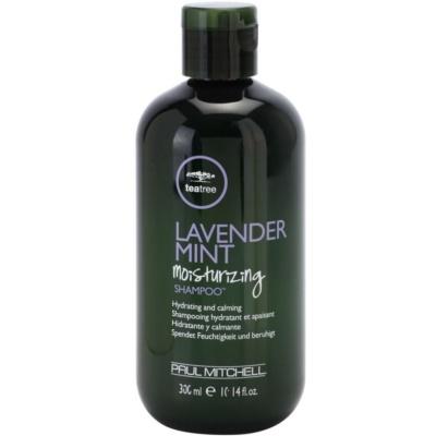 hydratační a zklidňující šampon pro suché a nepoddajné vlasy
