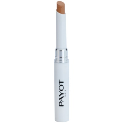 Purifying Concealer With Schale Extract