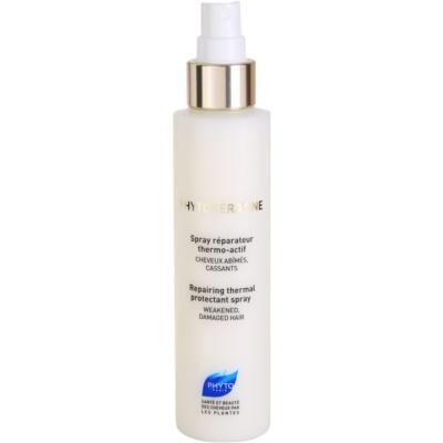 Schützender Spray für beschädigtes Haar