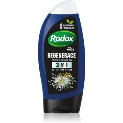 Radox Men Fresh  gel de duche e champô 2 em 1 para homens