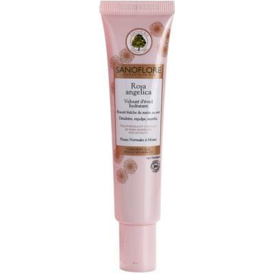 feuchtigkeitsspendende Creme für strahlenden Glanz für normale Haut und Mischhaut