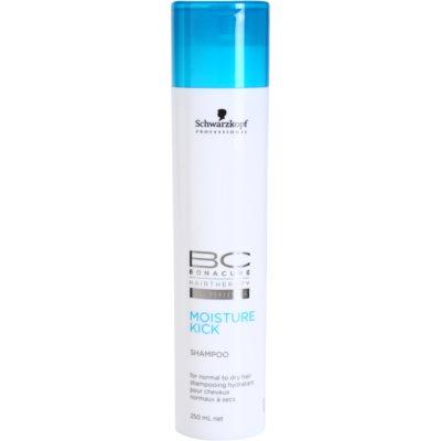 hydratisierendes Shampoo Für normales bis trockenes Haar
