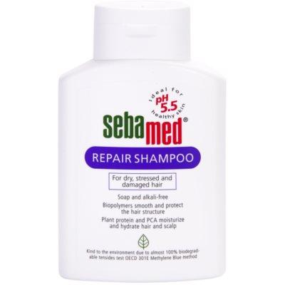 відновлюючий шампунь для сухого або пошкодженого волосся
