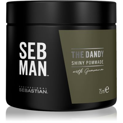 Sebastian Professional SEBMAN The Dandy pommade cheveux pour une fixation naturelle
