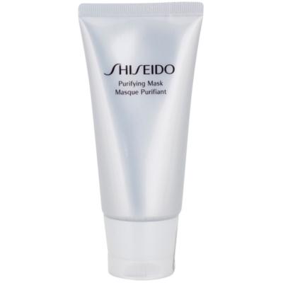 Reinigungsmaske gegen ein glänzendes Gesicht und erweiterte Poren