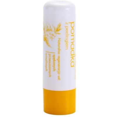 Sylveco Lip Care baume à lèvres effet exfoliant