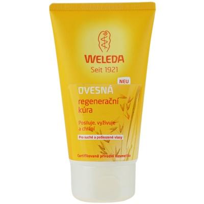 tratamento regenerador  para cabelo seco a danificado