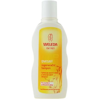 Weleda Oat αναγεννητικό σαμπουάν για ξηρά και κατεστραμμένα  μαλλιά