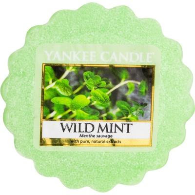 Yankee Candle Wild Mint Wachs für Aromalampen