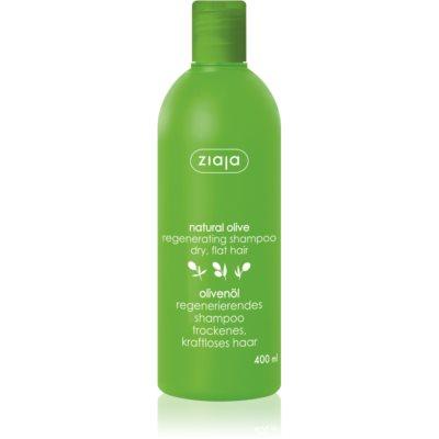 Herstellende Shampoo voor Alle Haartypen