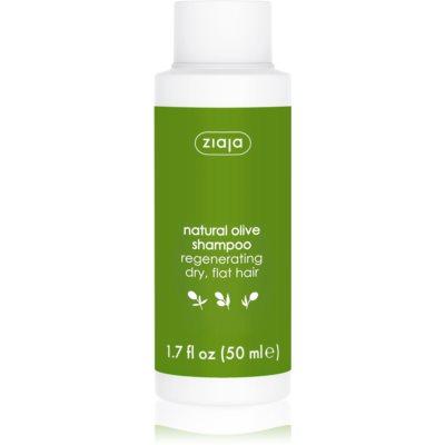 szampon regenerujący do włosów suchych