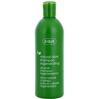 Regenierendes Shampoo für alle Haartypen