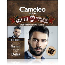 Delia Cosmetics Cameleo Men jednorázová farba pre okamžité zakrytie šedín odtieň 1.0 Black 2 x 15 ml