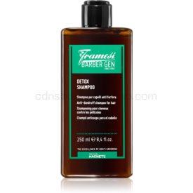 Framesi Barber Gen Detox čiastiaci detoxikačný šampón proti lupinám 250 ml