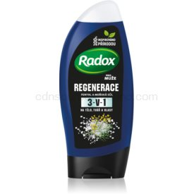 Radox Men Fresh sprchový gél a šampón 2 v 1 pre mužov 250 ml