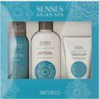 Artdeco Asian Spa Skin Purity lote cosmético II.