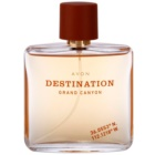 Avon Destination Grand Canyon Eau de Toilette für Herren 75 ml