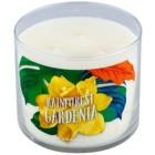 Bath & Body Works Rainforest Gardenia ароматизована свічка  411 гр