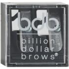 Billion Dollar Brows Color & Control kit sourcils parfaits