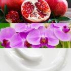 Calvin Klein Euphoria parfemska voda za žene 100 ml