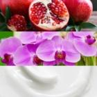 Calvin Klein Euphoria woda perfumowana dla kobiet 100 ml