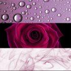 Calvin Klein Deep Euphoria eau de parfum pentru femei 100 ml