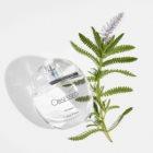 Calvin Klein Obsessed Eau de Parfum for Women 100 ml
