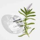 Calvin Klein Obsessed woda perfumowana dla kobiet 100 ml