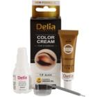 Delia Cosmetics Argan Oil barva na obočí