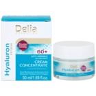 Delia Cosmetics Hyaluron Fusion 60+ Anti-Faltencreme zur Erneuerung der Hautdichte