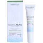 Dermedic Normacne Therapy traktament local impotriva acneei