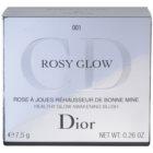 Dior Diorskin Rosy Glow рум'яна