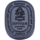 Diptyque Philosykos Solid Perfume unisex 3,6 g