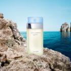 Dolce & Gabbana Light Blue eau de toilette pour femme 100 ml
