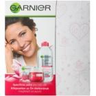 Garnier Skin Naturals coffret cosmétique I.