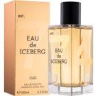 Iceberg Eau de Iceberg 74 Oud toaletní voda pro muže 100 ml