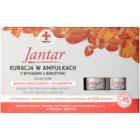 Ideepharm Medica Jantar erneuernde Kur für beschädigtes und brüchiges Haar