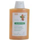 Klorane Desert Date šampón pre lámavé a namáhané vlasy