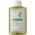 Klorane Olive Extract champú con extracto esencial de oliva