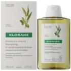 Klorane Olive Extract Shampoo mit ätherischen Auszügen aus Oliven