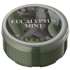 Kringle Candle Eucalyptus Mint bougie chauffe-plat 35 g