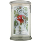 Kringle Candle Winter Apple Scented Candle 624 g