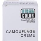 Kryolan Dermacolor Camouflage System kremasti korektor i puder 2 u 1