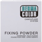 Kryolan Dermacolor Camouflage System Finishing Powder Big Package