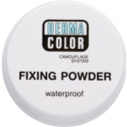 Kryolan Dermacolor Camouflage System Waterproof Setting Powder