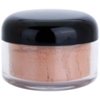 Kryolan Basic Face & Body pudra  bronzanta