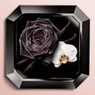 Lancôme La Nuit Trésor Eau de Parfum para mulheres 75 ml
