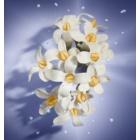 Lancôme La Vie Est Belle Florale eau de toilette pour femme 50 ml