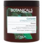 L'Oréal Paris Botanicals Strength Cure Maske für geschwächtes Haar